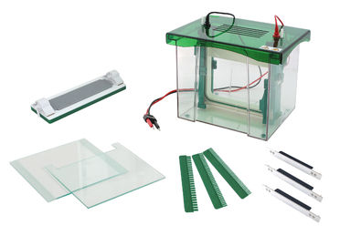 China Abundant Buffer Vertical Gel Electrophoresis Equipment CE / ISO Approved supplier