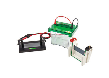 China Vertical Gel Electrophoresis Equipment Mini Protean Vertical Electrophoresis Cell supplier