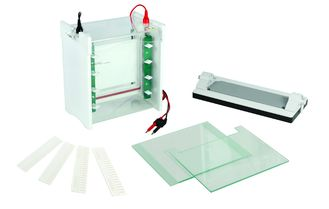 China Lab Use Polyacrylamide Gel Electrophoresis Apparatus Mini Protean Electrophoresis Cell Jy-scz6+ supplier