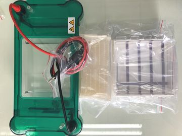 3/6/8/11 Sample Volume Agarose Gel Electrophoresis Equipment Science Lab Equipment  Jy-spct